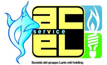 Acel Service